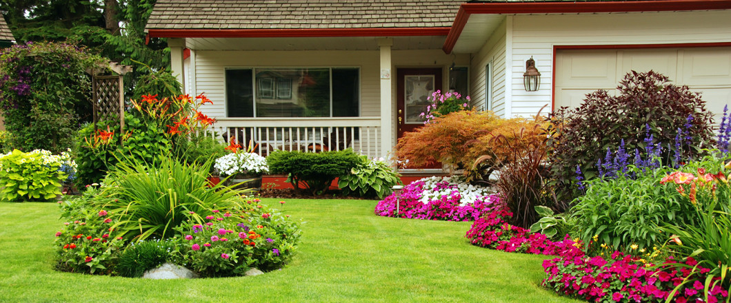 Don't Let Your Yard Look Less Than Perfect